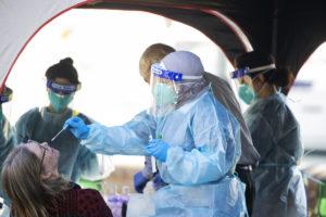 nsw virus local cases