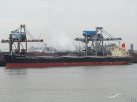 wa ships covid