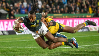 springboks 2020 rugby championships