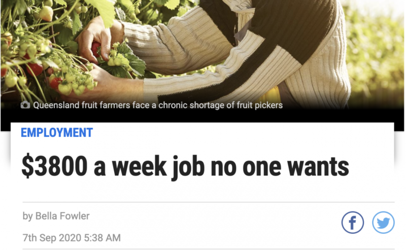 The Payslip That Proves Australians Aren T Too Lazy To Do Farm Jobs