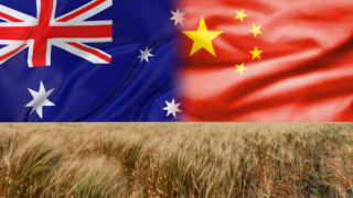 australia-china-wheat