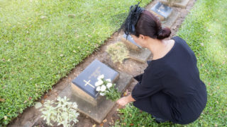 High Angle View Of Woman Holding Flowers On Tomb