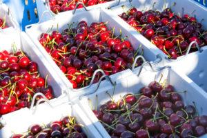cherries australia china