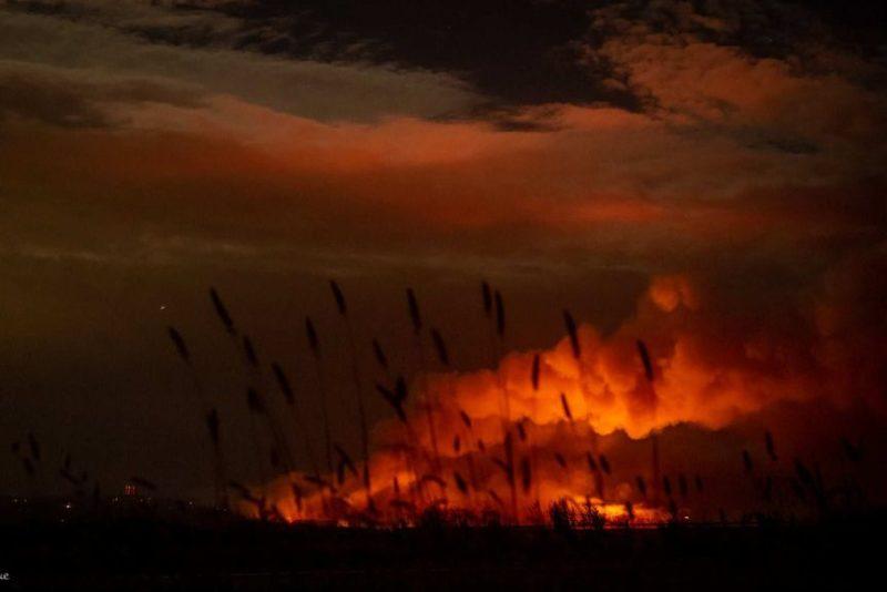 bushfires SA