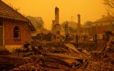 john barilaro bushfire grants