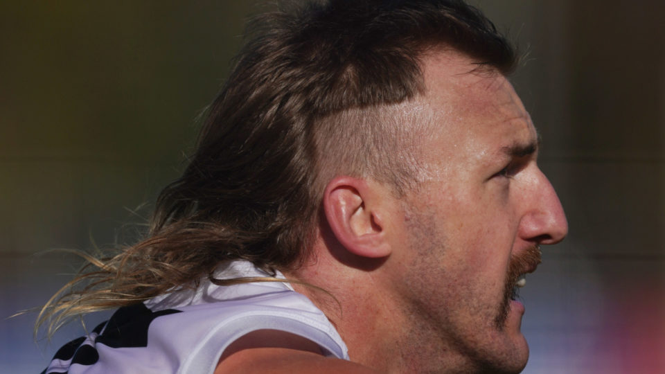 The mullet of Collingwood Magpies player Lynden Dunn.
