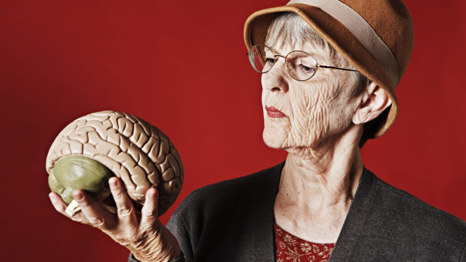 Stern older lady looks at medical model of human brain