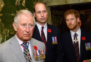 prince charles, prince william, prince harry