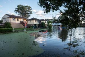 floods windsor nsw
