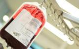 blood bank british ban