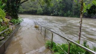 fnq cairns flood