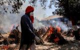 india covid travel jail