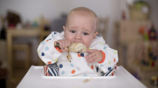 Babies protein obesity