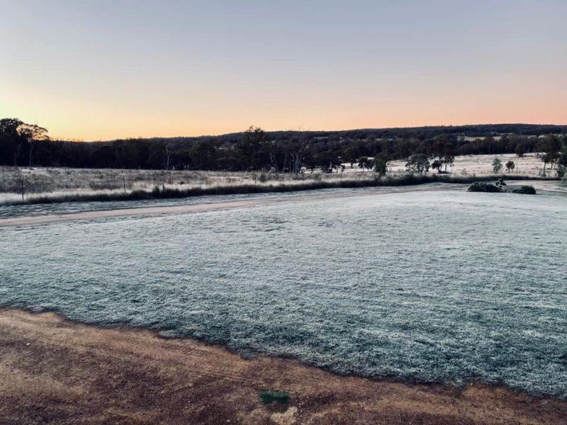 queensland-frost