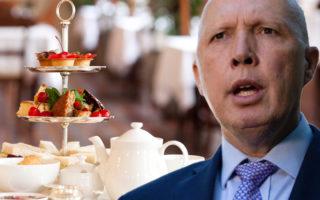 peter dutton morning tea