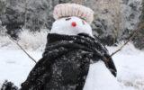 nsw snow