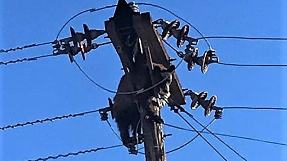 bear power outage arizona