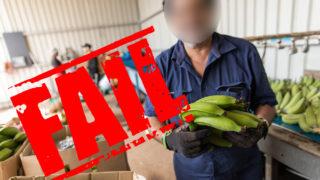 agriculture visa changes put migrants at risk