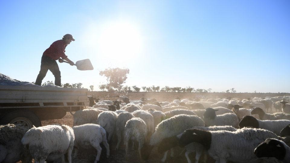 climate change farm profits