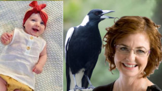 Baby Mia, a magpie, and Madonna King