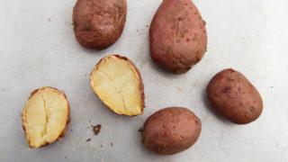 resistant starch potatoes