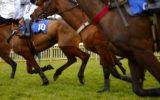 arrests victoria horse racing