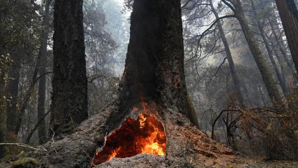 sequioa fire california
