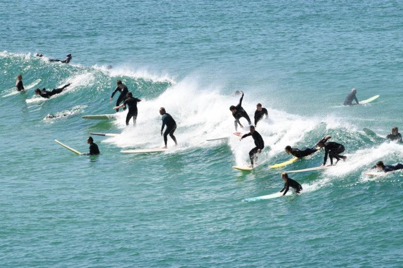 Australia shark deterrent