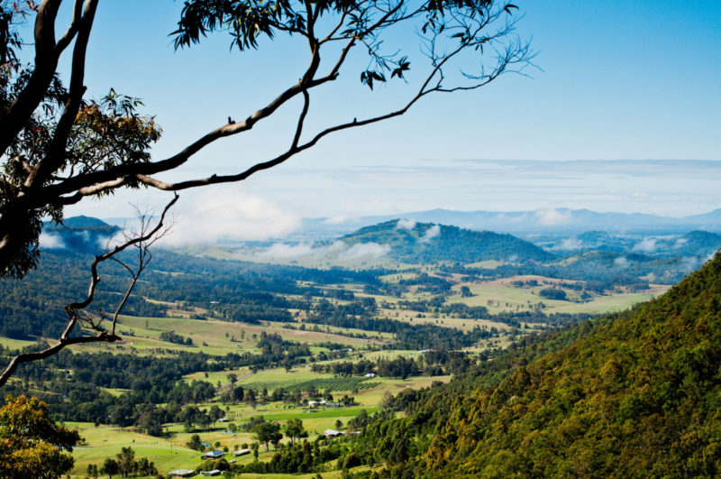 Sydneysiders can't yet travel to regional NSW for day trips.