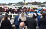 melbourne cup crowd covid